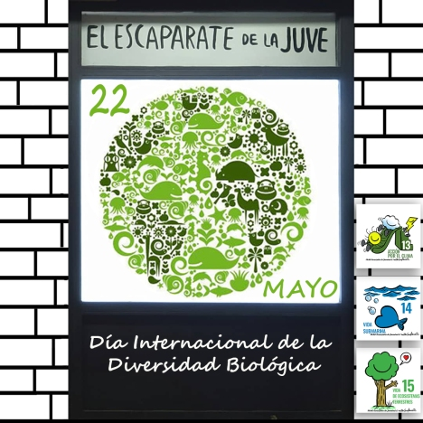escaparatebiodiversidad+0DS